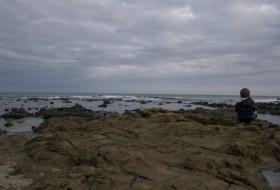 Uitzicht over Curio Bay