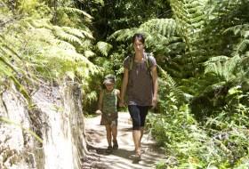 Wandelen door Abel Tasman National Park