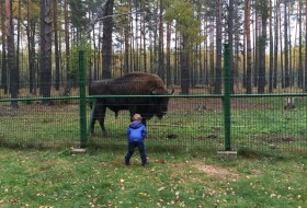 Roadtrip Wit-Rusland met kinderen: Berezynski