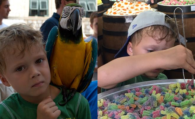 Dubrovnik met kinderen; vogels en snoep