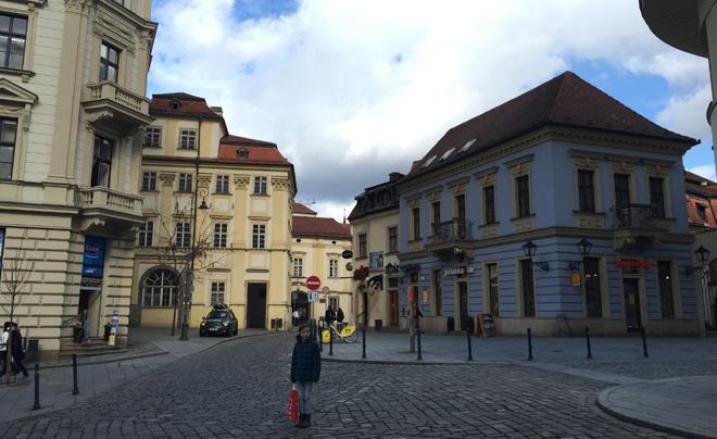 Stadsgezicht Brno