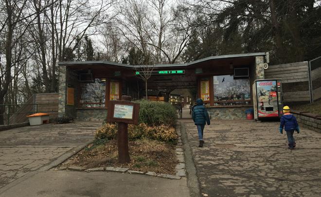 Brno zoo 01