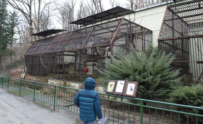 dierentuin van Brno 03