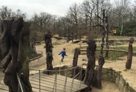 dierentuin van Brno 10