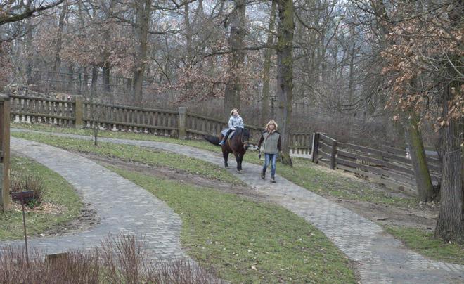 dierentuin van Brno 12