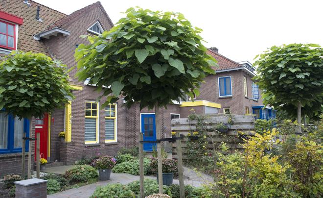 Museum in Drachten 12