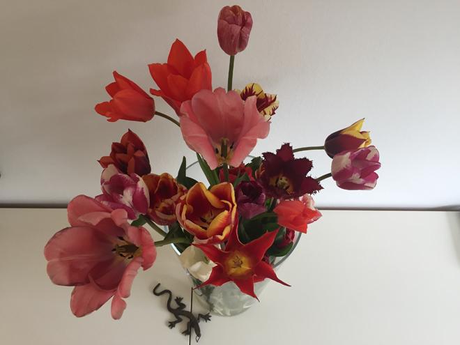 Zelf bloemen plukken 10