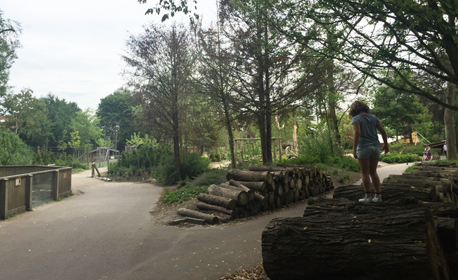 Met de kinderen naar plaswijckpark in Rotterdam 04