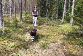 wandelen met husky's in Zweeds Lapland 06