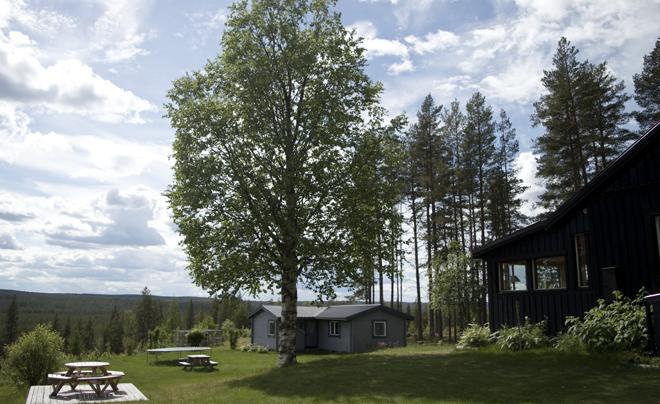 wandelen met husky's in Zweeds Lapland 10