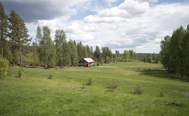 wandelen met husky's in Zweeds Lapland 11