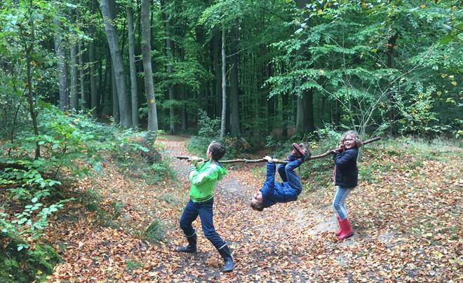 Wandelen met kinderen in de Vlaamse Ardennen - Brakelbos 03