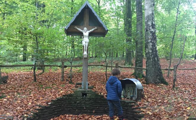 Wandelen met kinderen in de Vlaamse Ardennen - Brakelbos 06