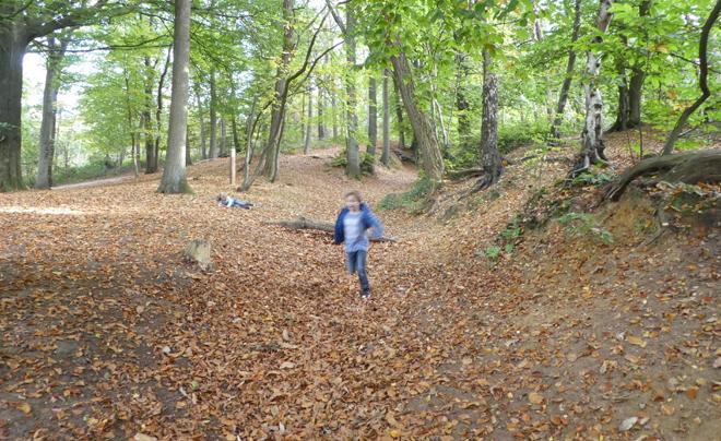 wandelen met kinderen in de vlaamse ardennen - Kluisbos 08