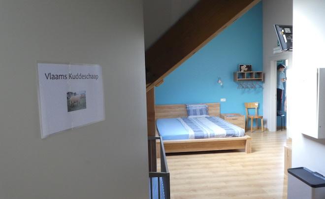 kindvriendelijke accommodatie in de Vlaamse Ardennen 18