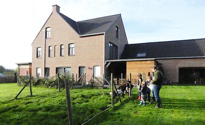 kindvriendelijke accommodatie in de Vlaamse Ardennen 23