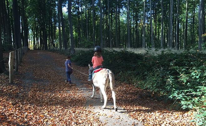 Wandelen met een ezel 10
