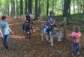 Wandelen met een ezel 09