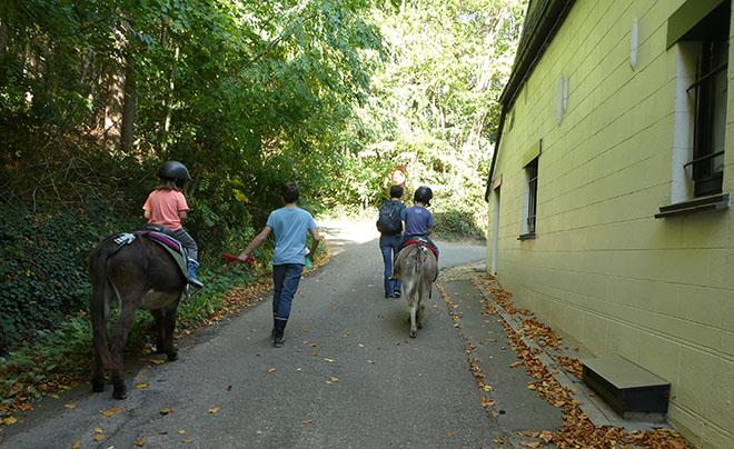 Wandelen met een ezel 12