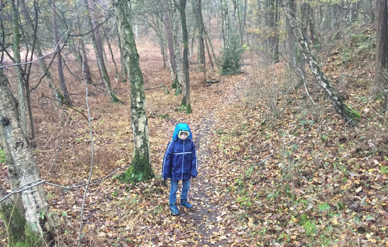 leuke plekken om te wandelen met kinderen 12