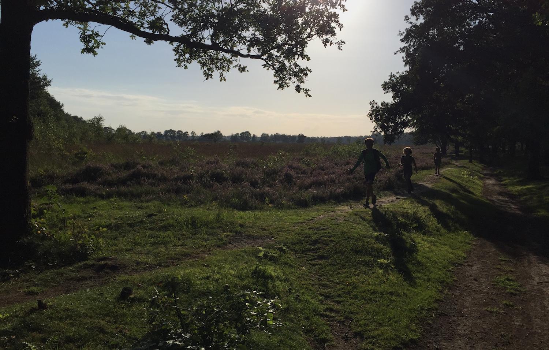 leuke plekken om te wandelen met kinderen 13