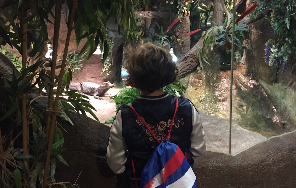 Doen aan de Belgische Kust met kinderen - serpentatium