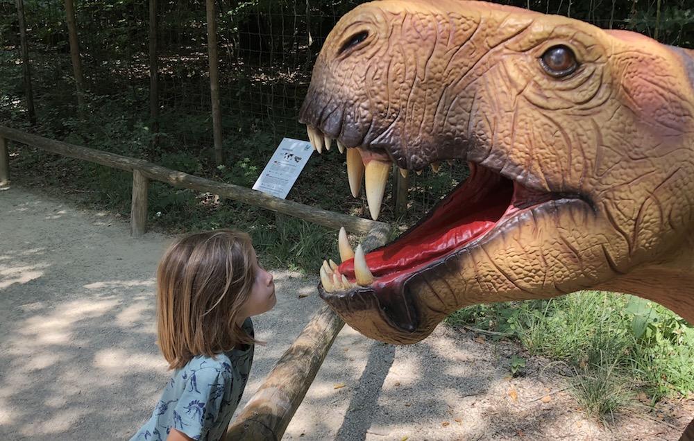 Dinosaurierpark Teufelsschlucht 03