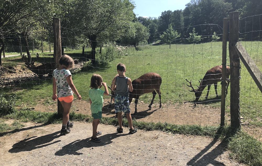 Roadtrip door Duitsland met kinderen 30