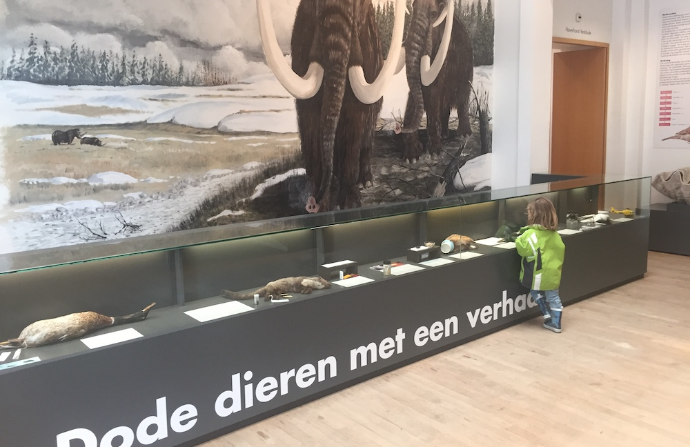 Kinderactiviteiten in Rotterdam 02