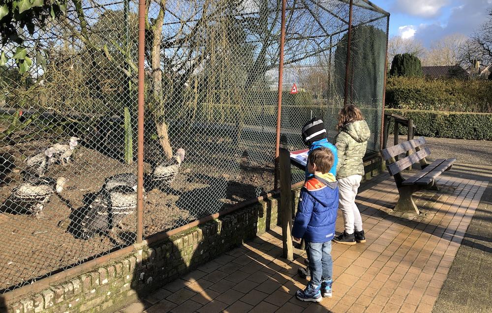 Vogelpark Avifauna 05