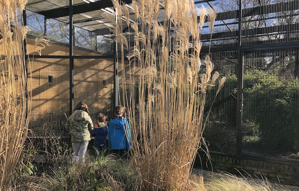 Vogelpark Avifauna 10