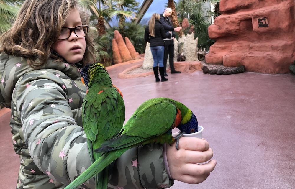 Vogelpark Avifauna 13