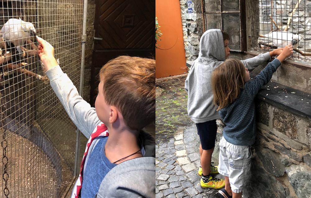 Met kinderen in Vogelburg 03