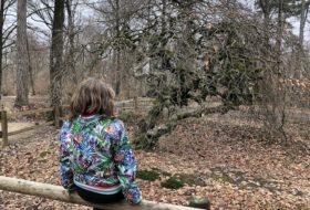 Kinderen in Reims en omgeving 20