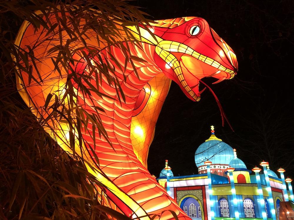 China Light Festival in de dierentuin van Antwerpen met kinderen 04