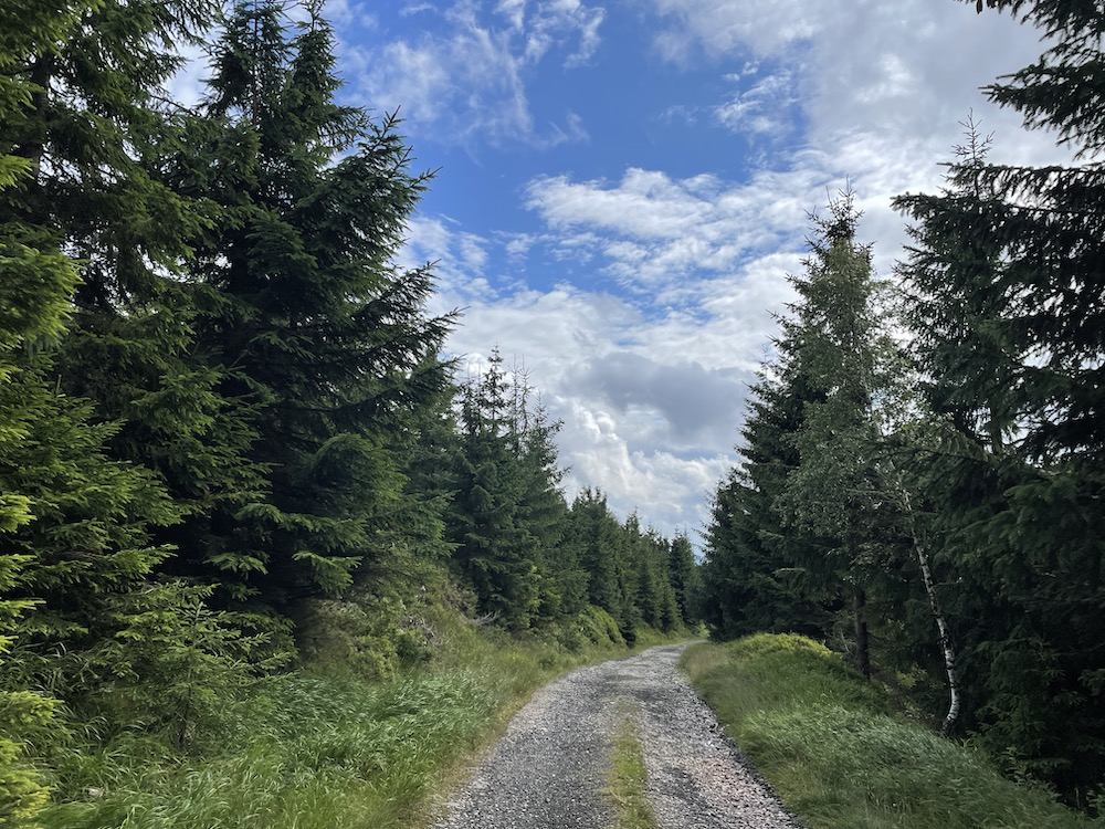Wandelen in skigebied Špindlerův Mlýn 10